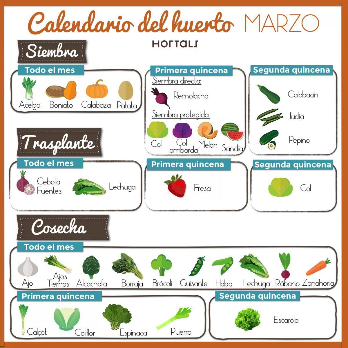 Calendario de cultivos en huerto urbano para el mes de - Huerto de urbano ...