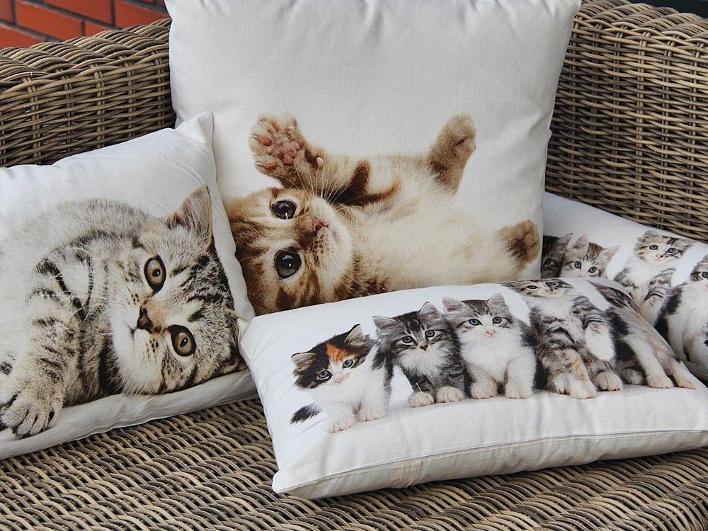 Kussen canvas kitten rood canvas dieren kussens gregory