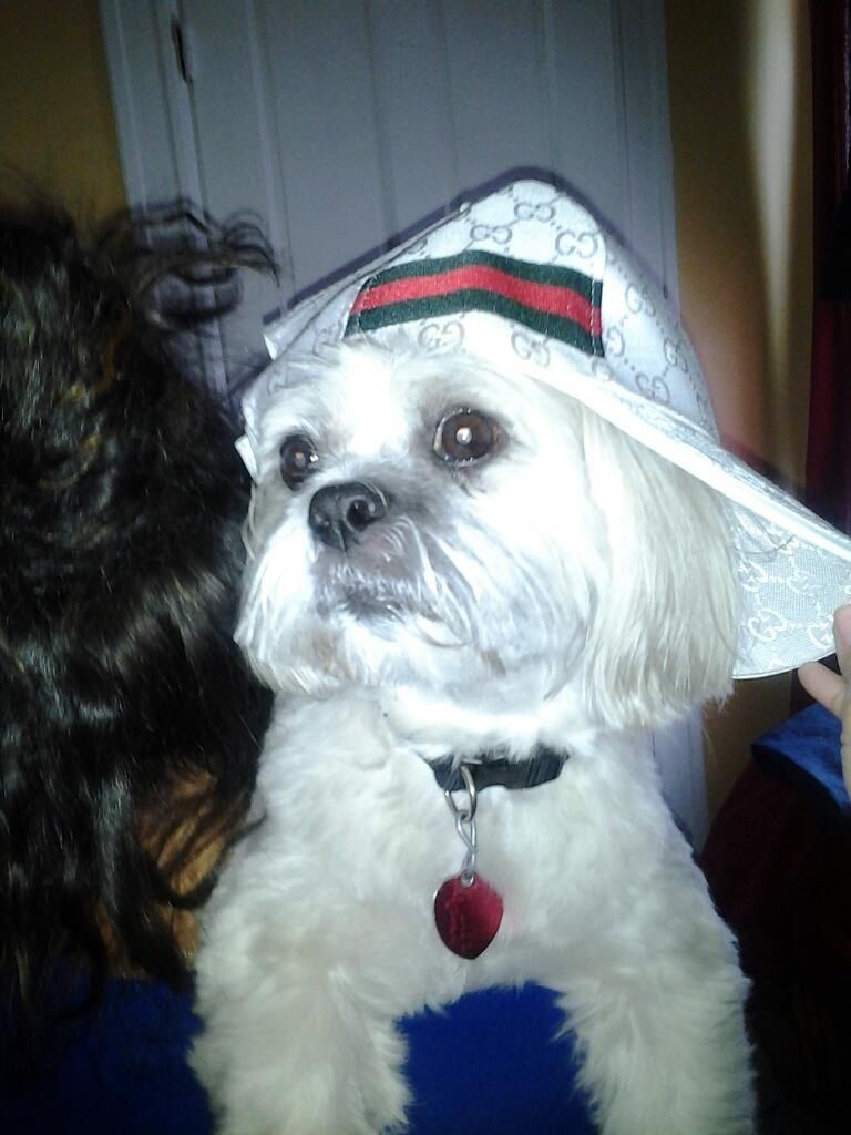 The #2 King of the house..our Coby Rivera! My babasss
