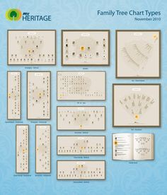 new chart types by myheritage com genealogy pinterest trees a