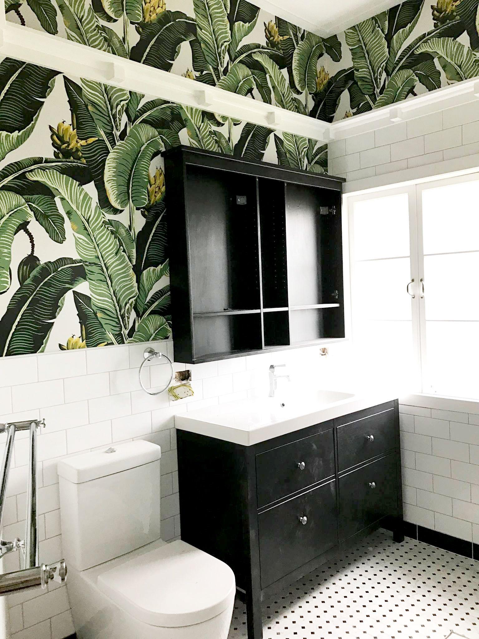 Kingdom Palm Wallpaper Tropical Botanical Decor Palm