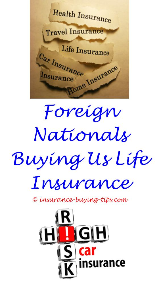 Aaa Com Insurance Quote One Car Insurance Quote  Buy Car Insurance Term Life Insurance And .