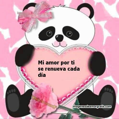 Mi Amor Por Ti Panda Osos Panda Osos