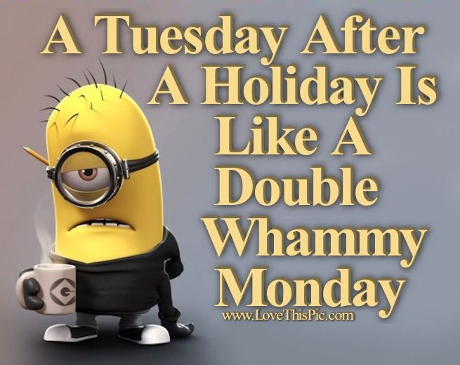 A Tuesday After A Holiday Is Like A Double Whammy Monday Holiday Minion Minions Tuesday Tues Happy Tuesday Quotes Tuesday Quotes Funny Funny Images With Quotes