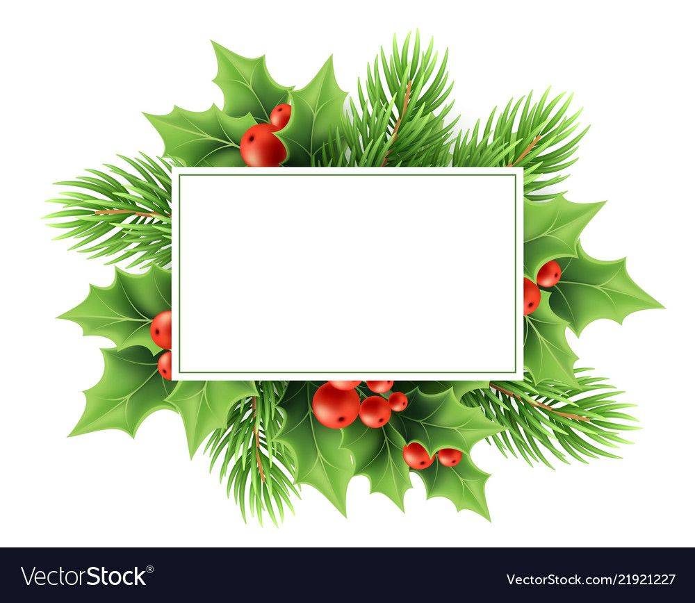 Christmas Greeting Card Vector Template Realistic Holly Tree Branch Red Berri Holiday Card Template Christmas Postcard Template Christmas Photo Card Template