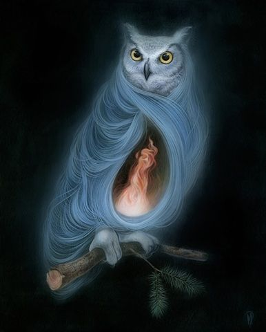 The Owls Are Not What They Seem ~ Dan May