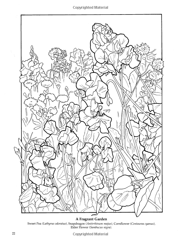 The Flower Garden Coloring Book Dover Nature Amazonco