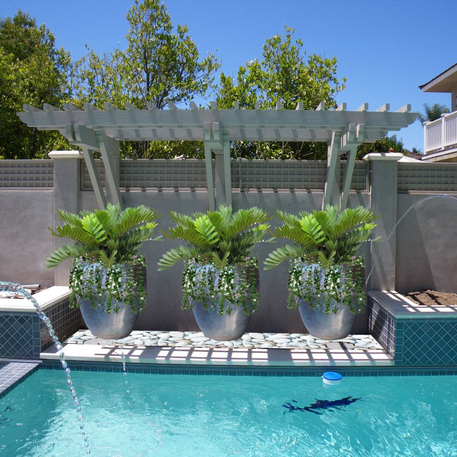 Planters Etc Commercial And Residential Designs Backyard Pool Landscaping Plants Around Pool Landscaping Around Pool