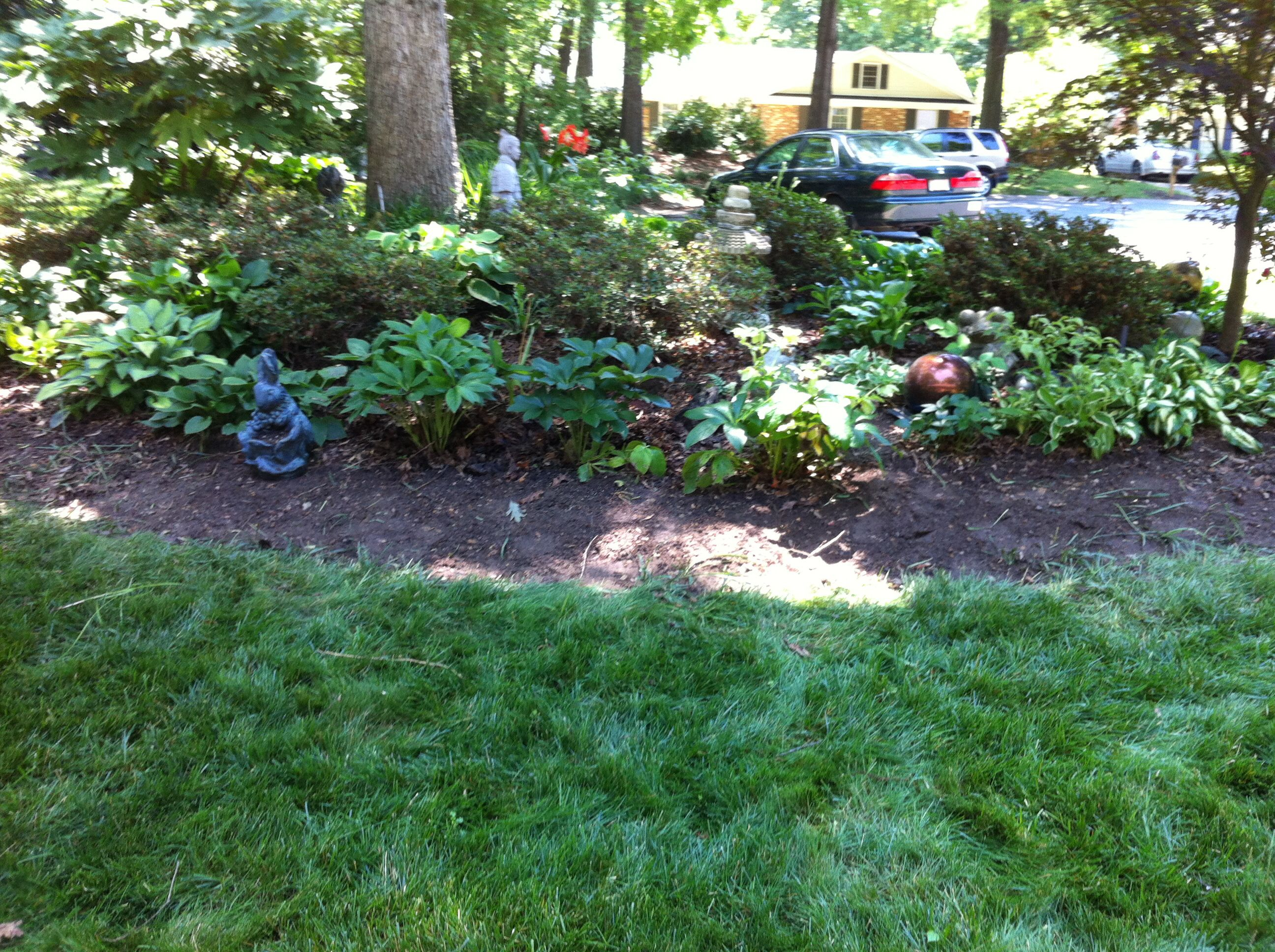 My Front Yard Landscaping