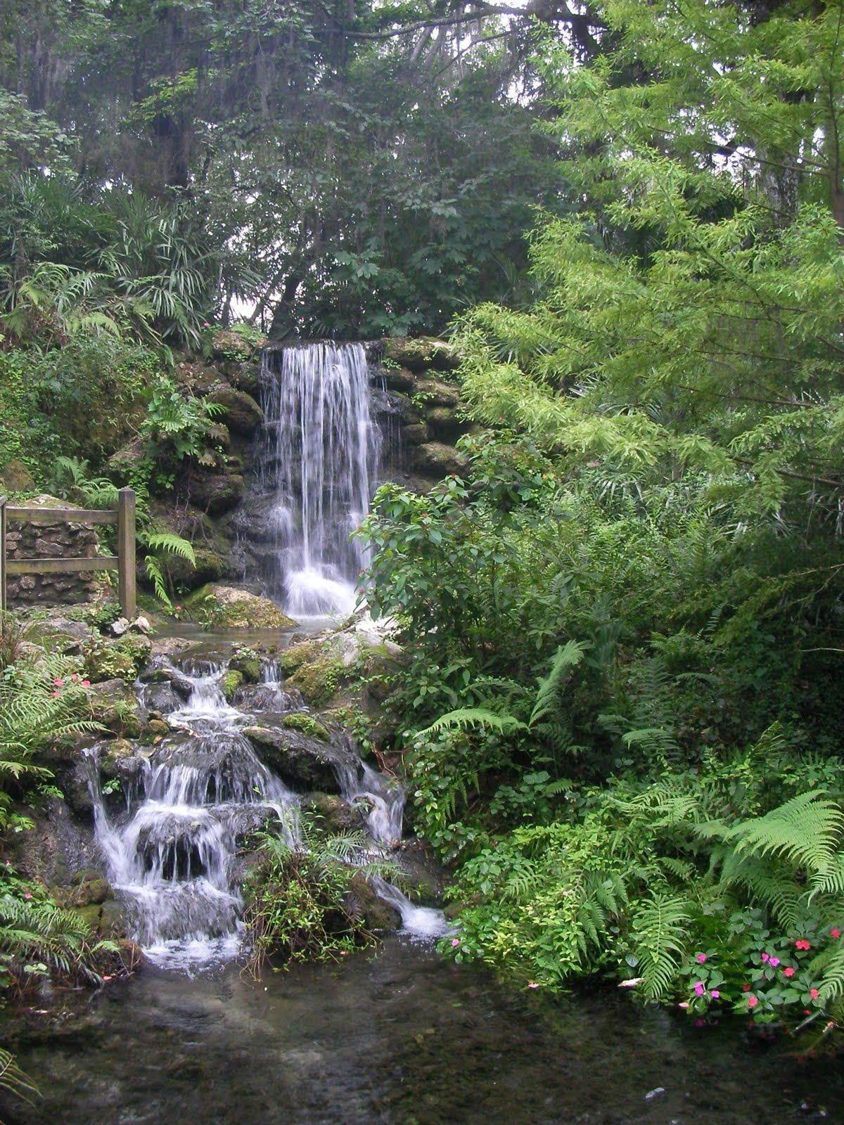 Rainbow Springs, FL....Waterfalls in Florida.. and not the kind you