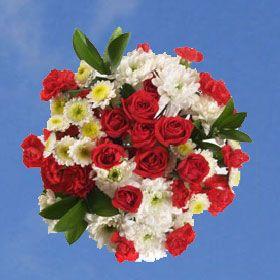 Best Proud Arrangements Mini Carnations White Flower Arrangements Wholesale Flowers