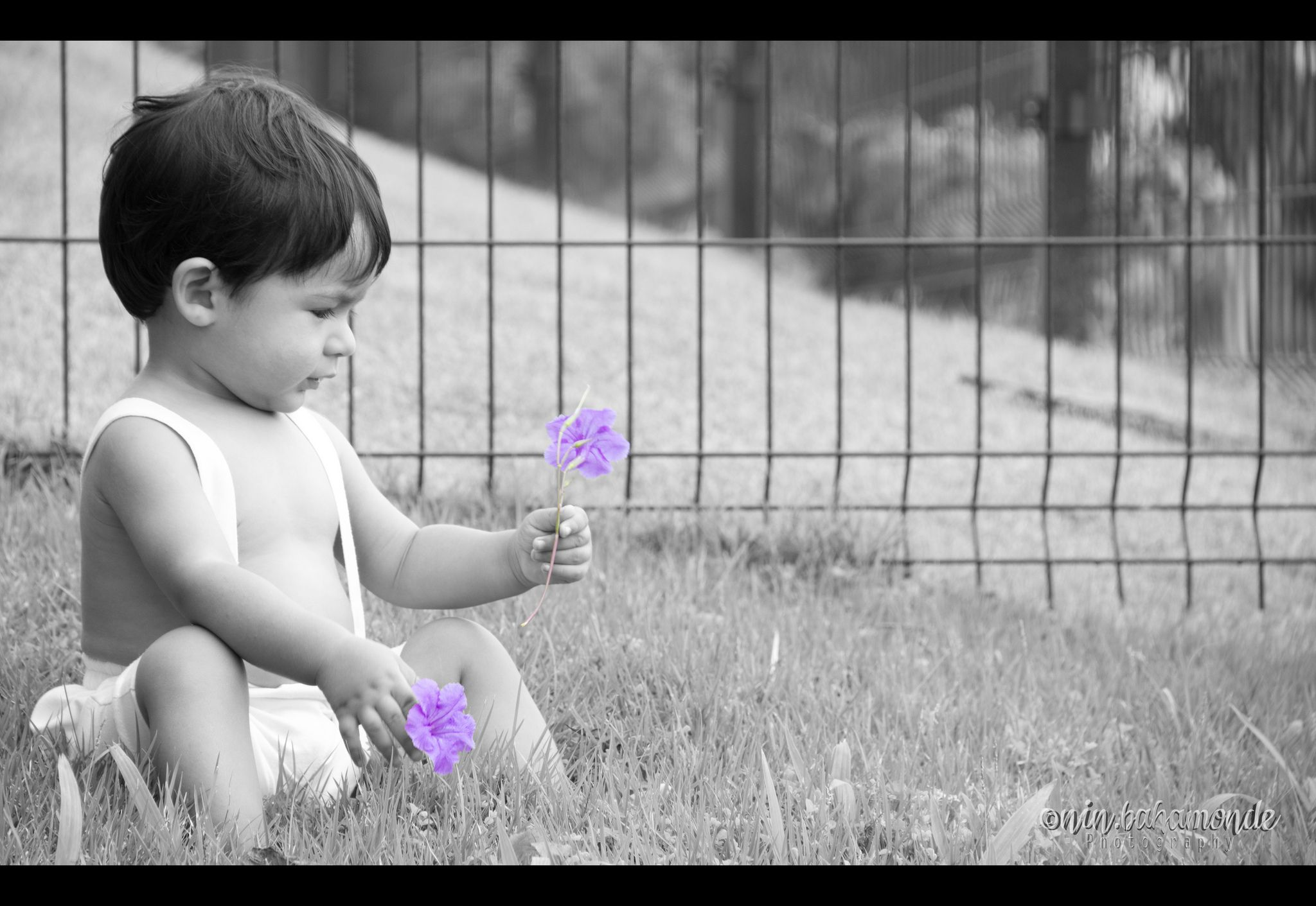 https://flic.kr/p/dBLt7M | A veces la felicidad esta en las cosas pequeñas... | Baby photoshoot  Work  © 2012 Nin Photography