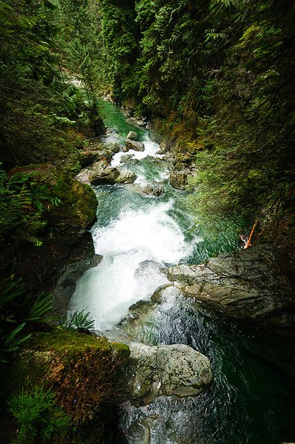 Twin Falls, Lynn Canyon, North Vancouver, BC by Bryn Tassell