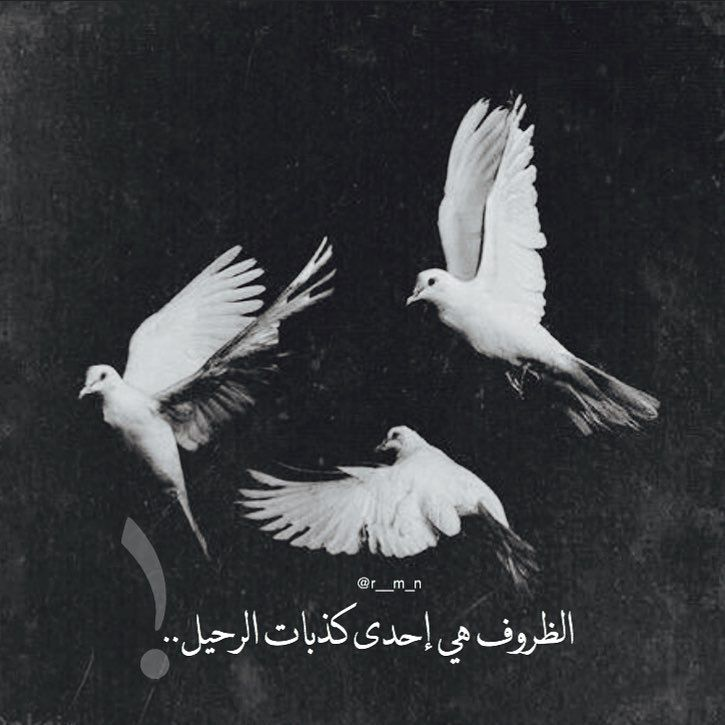 كذبات Hash Tags Deskgram   بالعربي   Moños, Oscuridad