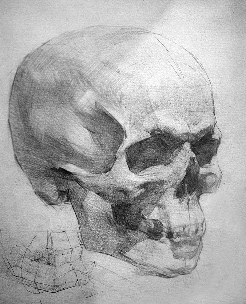 artistik anatomi - Buscar con Google | Rostros artísticos ...