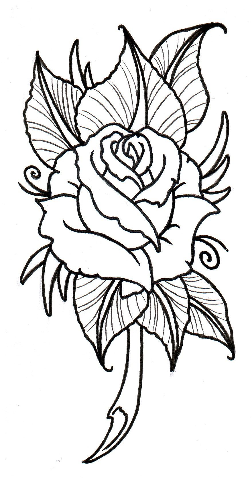 Line Drawing Name Designs : Free rose tattoos designs cool bonbaden