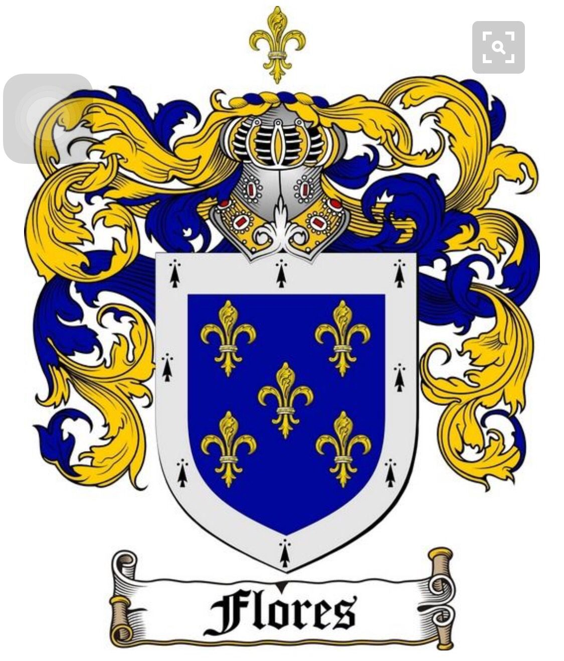 Apellido flores heraldica apellidos espaoles escudos de armas flores family crest flores family crest flores coat of arms origins available italian spanish where did the italian flores family come from buycottarizona