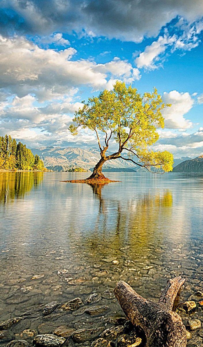 Lago Wanaka Nova Zel & 226ndia Landscapes Nature