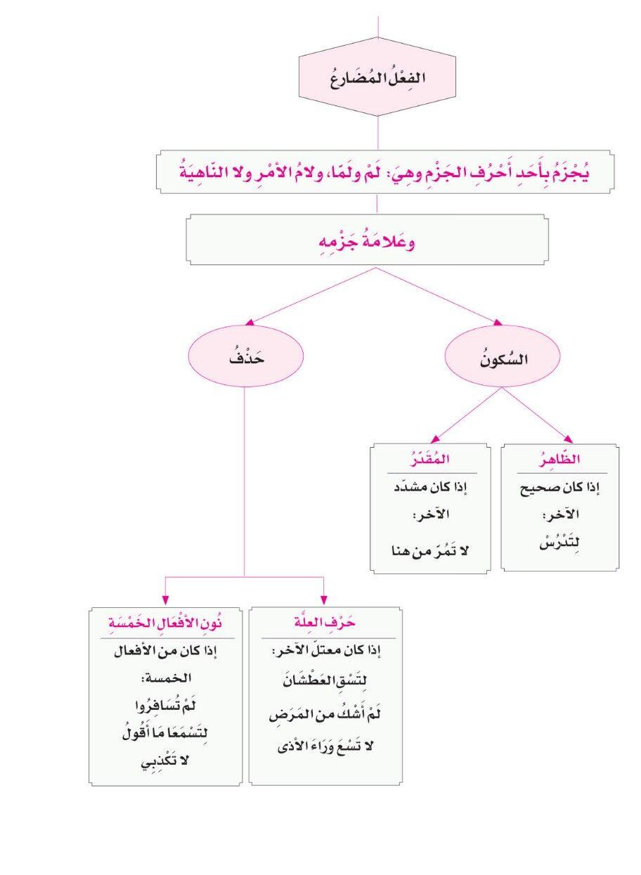 Pin By Caroline Sassine On اللغة العربية Learning Arabic Learn Arabic Language Arabic Langauge