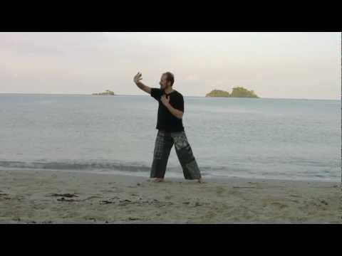 Medical Qi Gong To Balance Water Phase And Kidney Bladder Channels Youtube Qigong Qigong Exercises Gong