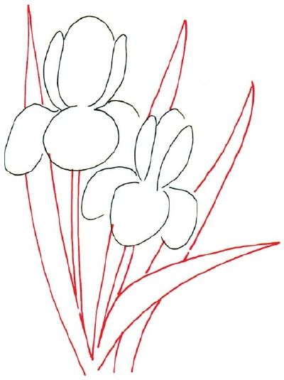 How To Draw An Iris In 5 Steps Iris Drawing Flower Drawing Flower Line Drawings