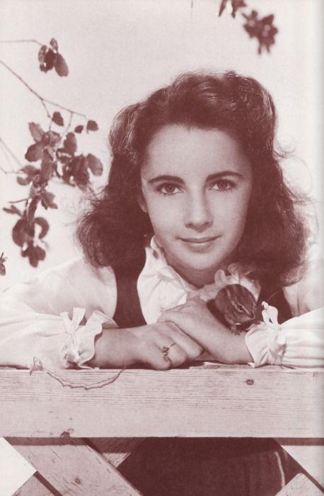 National Velvet Starring Elizabeth Taylor Age 12 Elizabeth Taylor Young Elizabeth Taylor Taylor