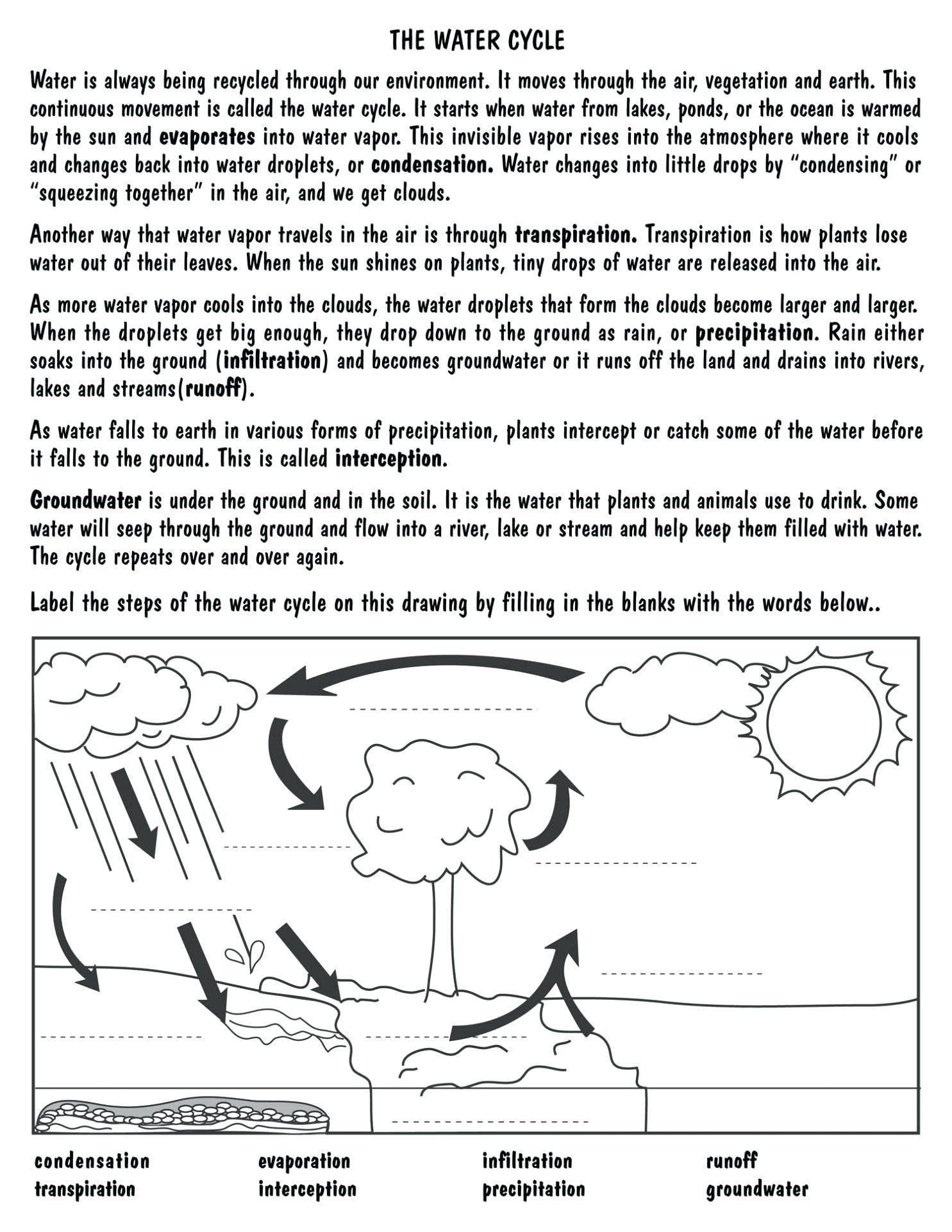 Water Cycle Worksheet 5th Grade Sleet Worksheet In 2020 Water Cycle Worksheet Water Cycle Water Cycle Activities