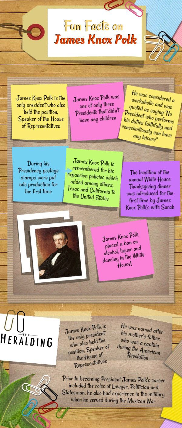 fun facts about james k polk www theheralding com infographics