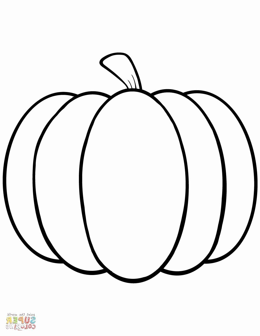 Free Pumpkin Coloring Pages Preschoolers Beautiful Pumpkin