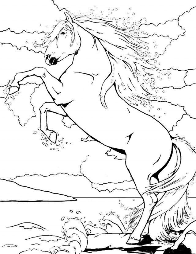 pin on lovas színezők  lovas témák