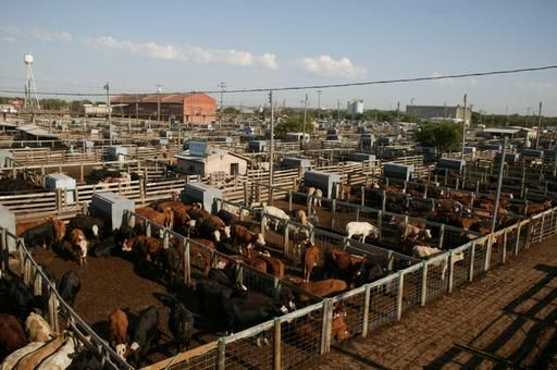 Oklahoma City S Stockyard City Is The Home Of The Largest Stocker