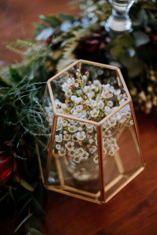 Photo of Waxflower in Gold Geometric Vase