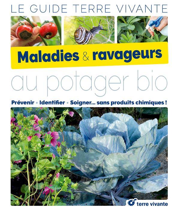 Maladies Et Ravageurs Au Potager Bio Ravageurs Jardinbio