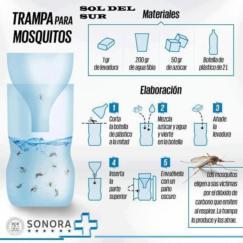 Trappola Anti Zanzare Fai Da Te Ambiente Bio Trampa Para Mosquitos Trampa Casera Para Mosquitos Repelente De Mosquitos Casero