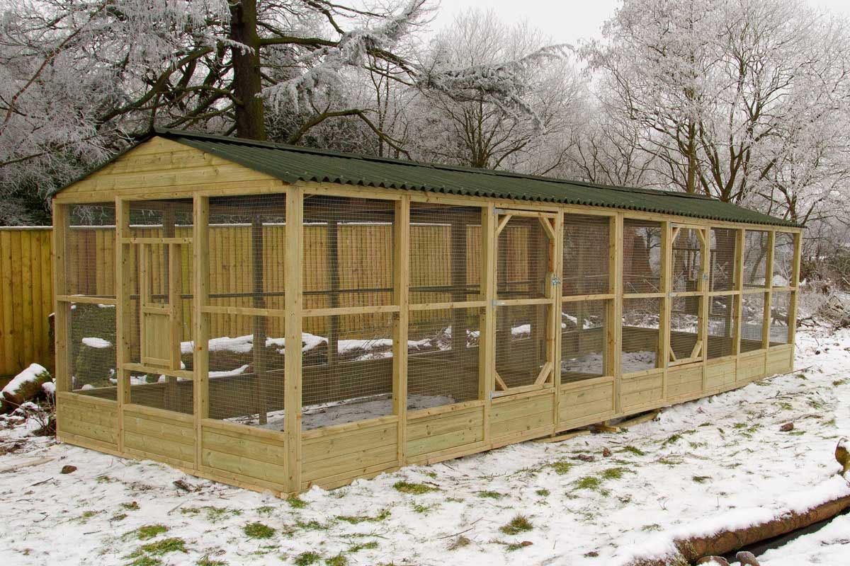 Walk In Chicken House Walk In Chicken Run For Use With Omlet Cube Chicken Coops  Wells