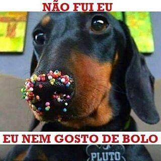@Regrann from @fazedoradecomida -  #fazedoradecomida #cozinhadafa #receitas #receita #donadecasa #cozinheira #cozinheiro #homemnacozinha #homenscozinhando #receitarapida #cozinhaterapia #dica #dicas #instafood #food #instalike #instagood #love #errejota #rj #brasil #gastronomia #mestrecuca #humor #piada #comedy #comedia #dog #boanoite by leila.alvesrj
