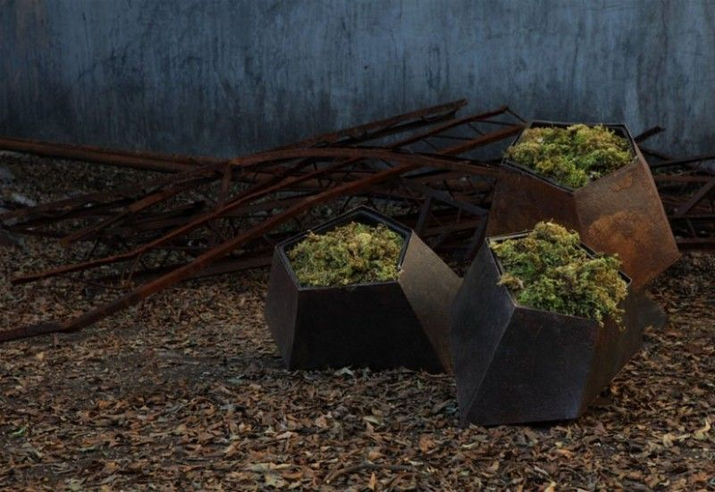 Greenery for Your Home Dressed in Modern Skin: the Boulders Collection