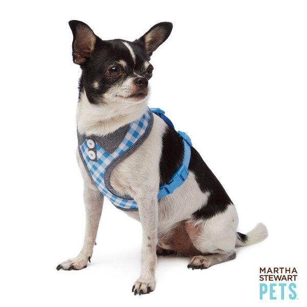 Martha Stewart Pets Gingham Dog Harness Harnesses Petsmart Dog Harness Pets Martha Stewart Pets