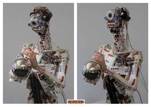 Electronica Humanoide