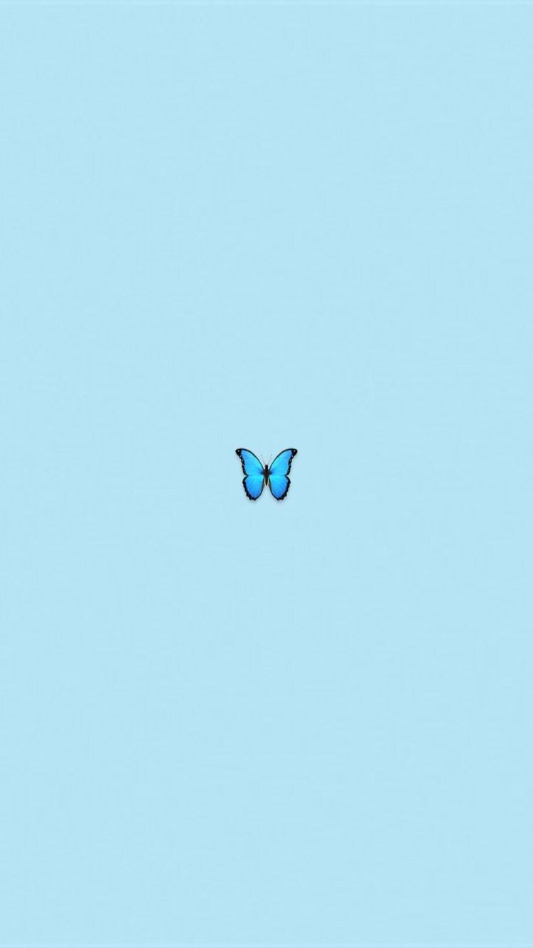 En honor a mi mariposaa te quiero!🦋💙 Blue wallpaper