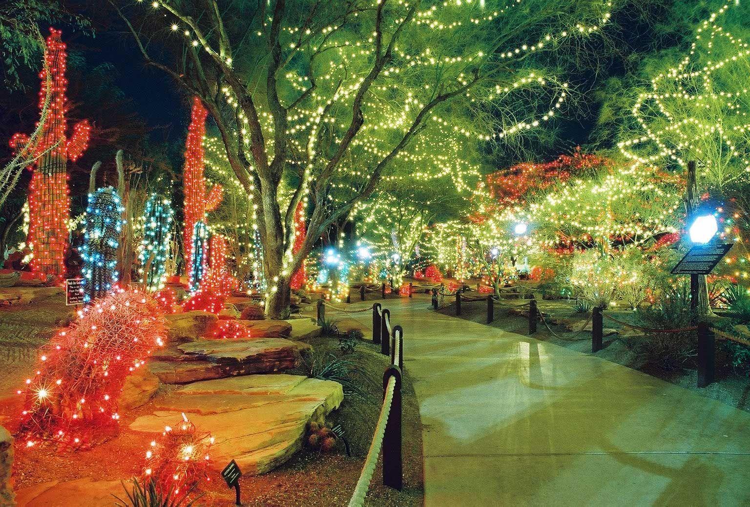Las Vegas Cactus Garden Christmas Lights