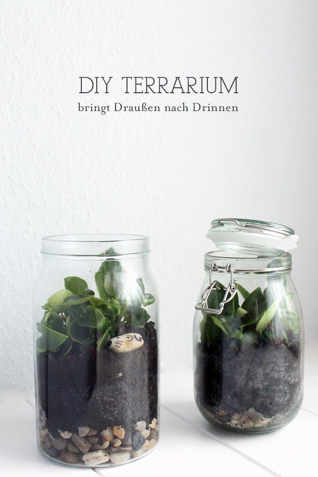 diy terrarium kleiner garten im glas diy einfach selber machen pinterest terrarium diy. Black Bedroom Furniture Sets. Home Design Ideas