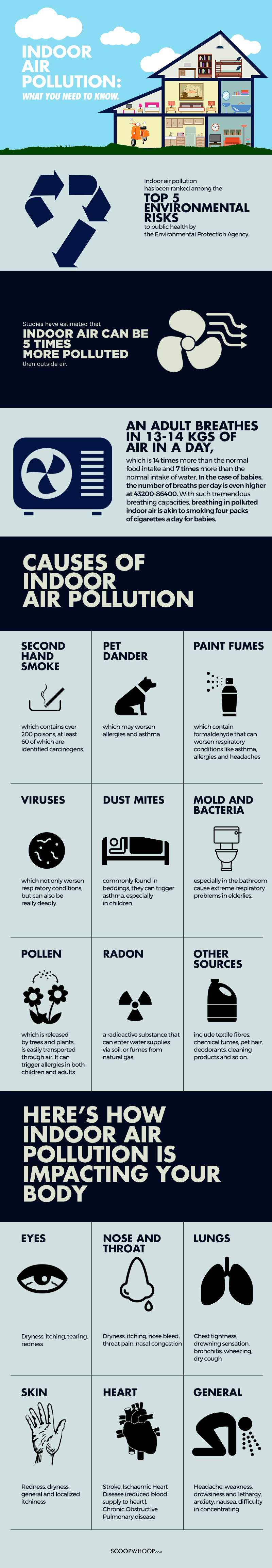 Here Are The Causes Effects And Solutions To The Indoor Air Pollution Indoor Air Pollution