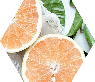 Organic Skin Care & Hair Care Products | Avalon Organics