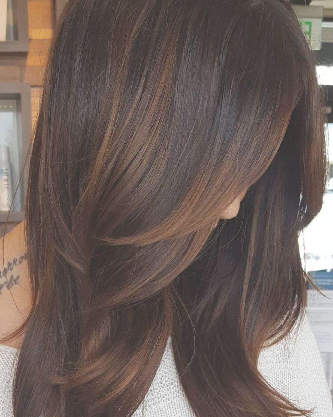 Copper Highlights For Dark Hair Light Hair Color Low Light Hair Color Hair Highlights