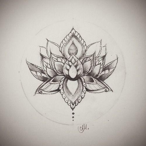 Lotus Flower Drawings On Pinterest Squirrel Tattoo