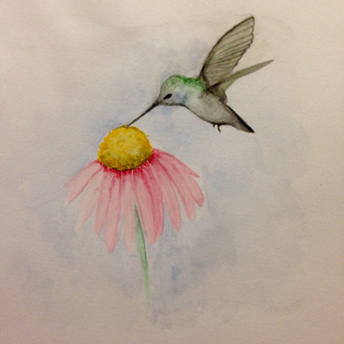 Watercolor Hummingbird. Easy to paint! in 2019 ...