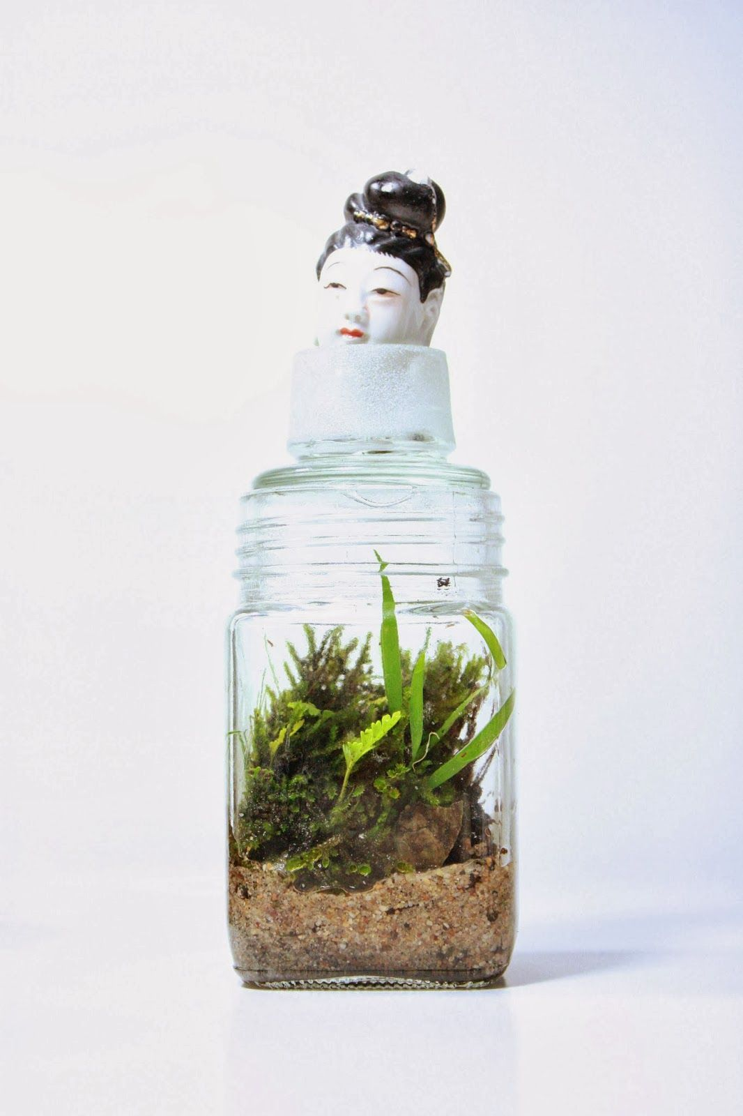 Terrarium The Slug And The Squirrel Terrariums Pinterest  # Terrarium Dangle
