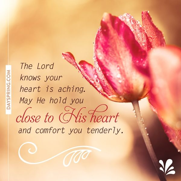Tender Comfort  Ecards  Dayspring  We Are Victorious In Christ