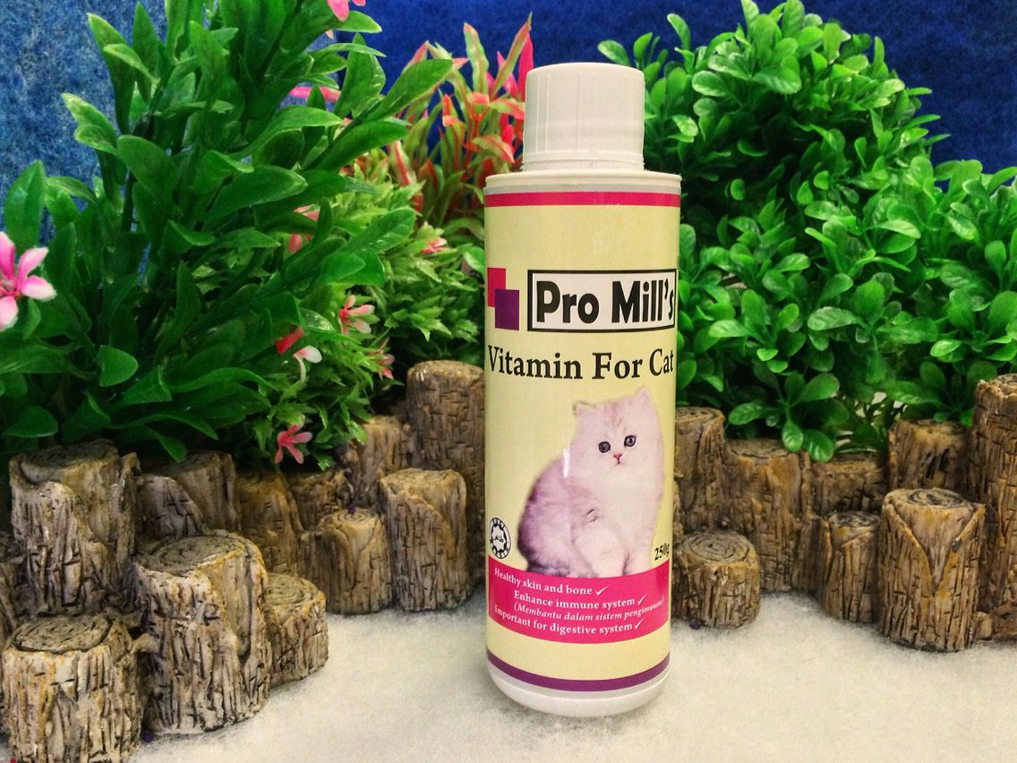 Pro Mill S Cat Vitamin Is Suitable For Your Cat And Kitten After Disease And Breeding It Also Provide Vitamin Needed By Cat And Kit Cat Vitamins Pets Your Pet